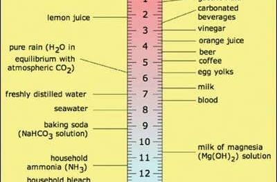 Fundamentals of Blood Gas Analysis