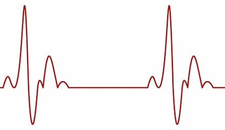 Stroke, Heart Failure Cited in Cardiovascular Monitoring Market Growth