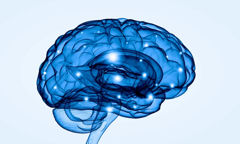 Task Force Advises Against Use of Brain Imaging to Diagnose Chronic Pain