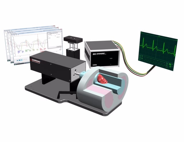 CIRS Releases Dynamic Cardiac Phantom to Simulate Human Heart